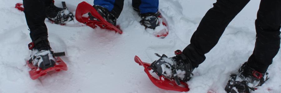 Rote Socken auf Roten Schneeschuhen im Thüringer Wald